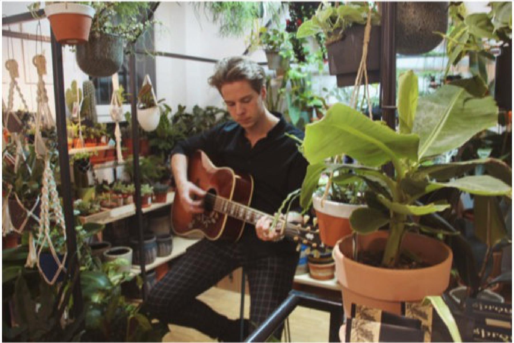 Künstler spielt Konzert umringt von Pflanzen